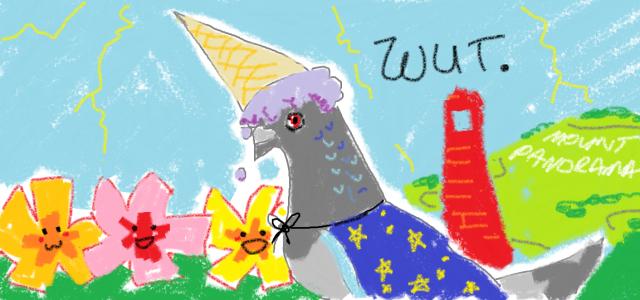 pigeonwizard
